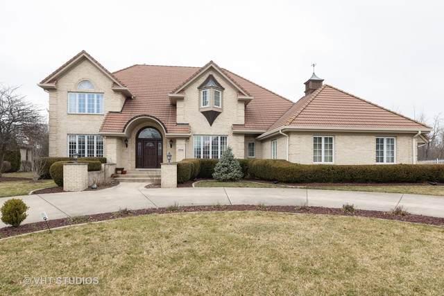 12558 W Lake View Drive, Orland Park, IL 60467 (MLS #10684385) :: Baz Network   Keller Williams Elite