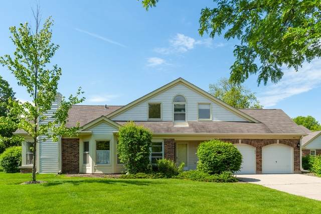 401 Satinwood Terrace, Buffalo Grove, IL 60089 (MLS #10684421) :: Helen Oliveri Real Estate
