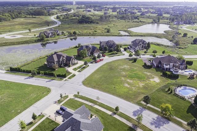 8804 Port Washington Drive, Frankfort, IL 60423 (MLS #10684712) :: Littlefield Group