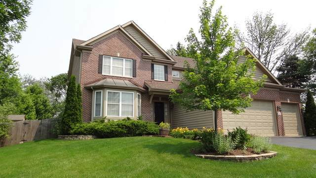 113 S Clyde Avenue, Palatine, IL 60067 (MLS #10684741) :: Helen Oliveri Real Estate