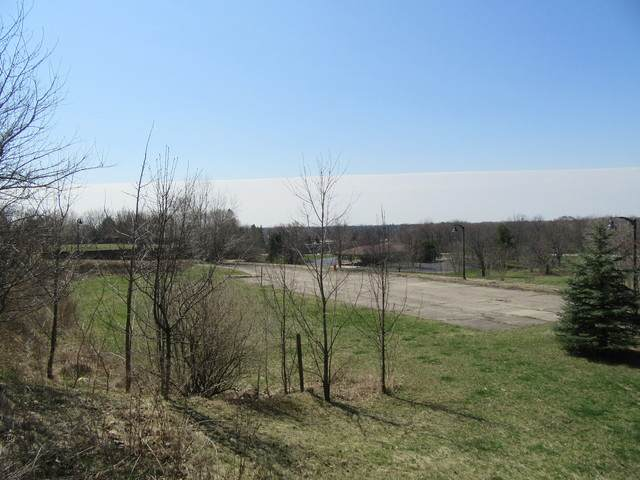 Lot 1 Algonquin Road, Algonquin, IL 60102 (MLS #10684794) :: The Wexler Group at Keller Williams Preferred Realty