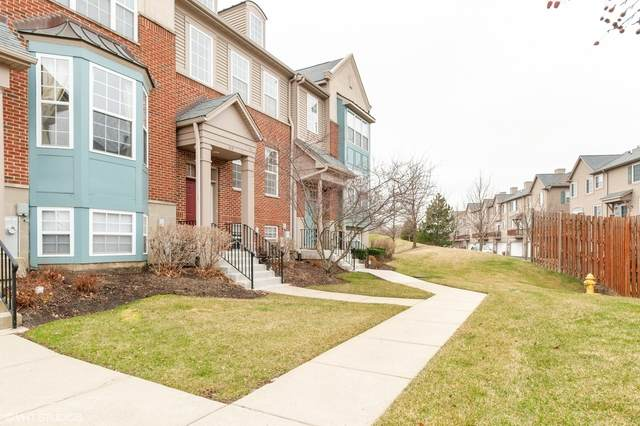 313 Station Park Circle, Grayslake, IL 60030 (MLS #10684914) :: Janet Jurich