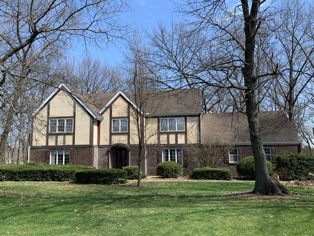 392 S Main Street, Seneca, IL 61360 (MLS #10684997) :: Suburban Life Realty