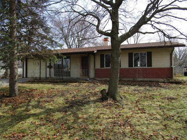 715 Rambler Court, Streamwood, IL 60107 (MLS #10685119) :: BN Homes Group