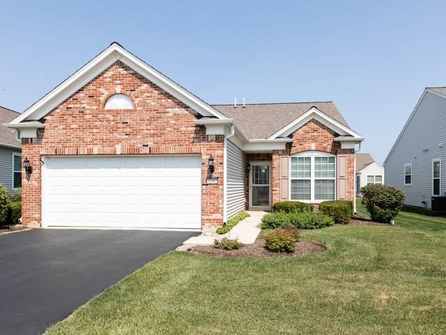 3286 Hutchinson Lane, Mundelein, IL 60060 (MLS #10685180) :: Helen Oliveri Real Estate