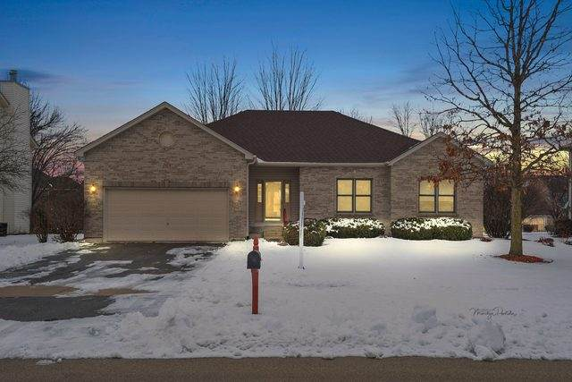 263 Isleview Drive, Oswego, IL 60543 (MLS #10685340) :: The Dena Furlow Team - Keller Williams Realty