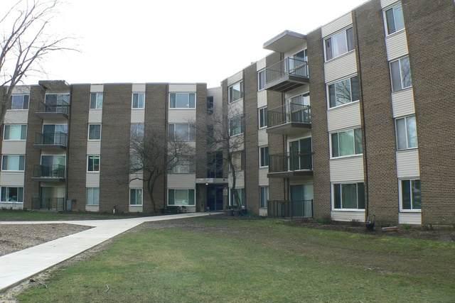 140 W Wood Street #421, Palatine, IL 60067 (MLS #10685412) :: Helen Oliveri Real Estate