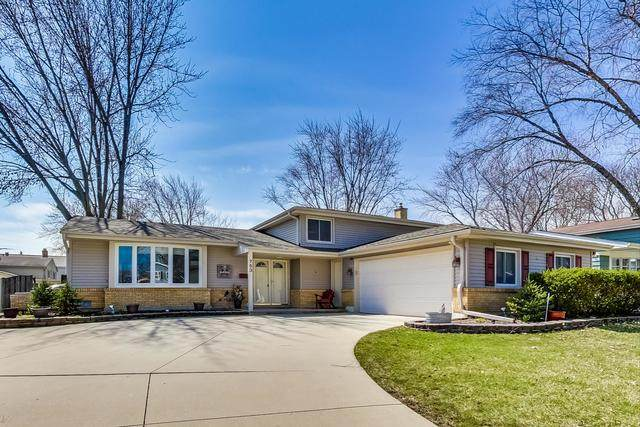 753 E Mill Valley Road, Palatine, IL 60074 (MLS #10685449) :: Helen Oliveri Real Estate