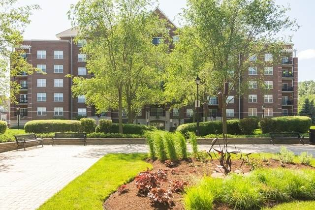 470 W Mahogany Court #205, Palatine, IL 60067 (MLS #10685532) :: BN Homes Group