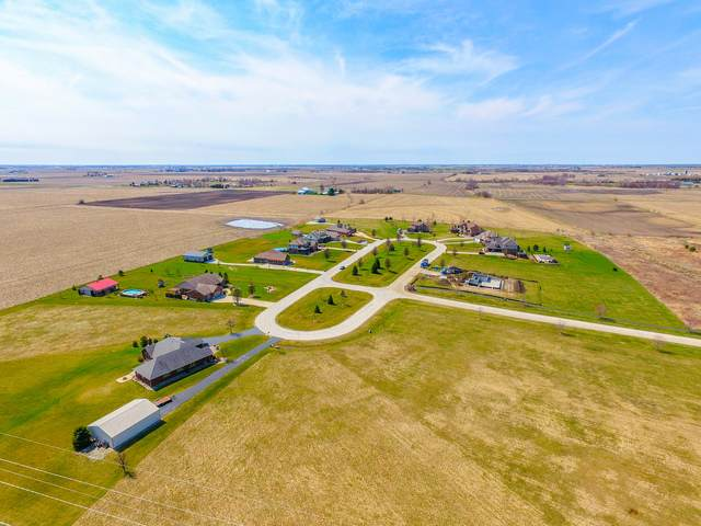 10026 W Sweet Grass Circle, Monee, IL 60449 (MLS #10685585) :: Helen Oliveri Real Estate