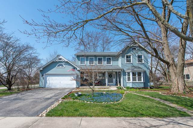 11 Oak Leaf Court, Woodridge, IL 60517 (MLS #10685740) :: Helen Oliveri Real Estate