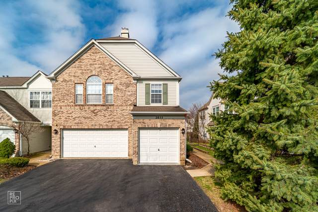 2855 Stonewater Drive, Naperville, IL 60564 (MLS #10685875) :: The Dena Furlow Team - Keller Williams Realty