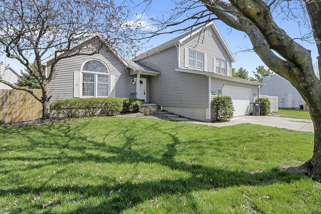 4023 Danbury Drive, Champaign, IL 61822 (MLS #10686133) :: BN Homes Group