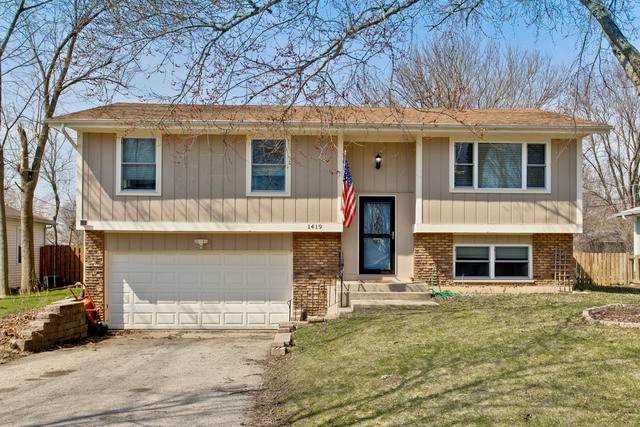 1419 Adams Street, Lake In The Hills, IL 60156 (MLS #10686213) :: Helen Oliveri Real Estate