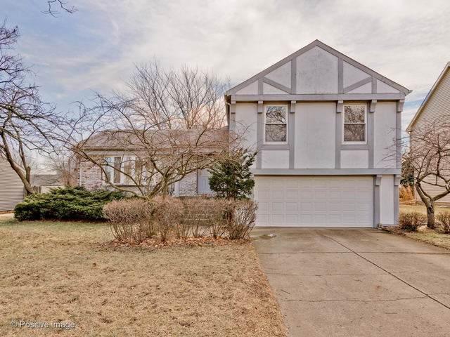 710 Thompson Boulevard, Buffalo Grove, IL 60089 (MLS #10686295) :: Helen Oliveri Real Estate