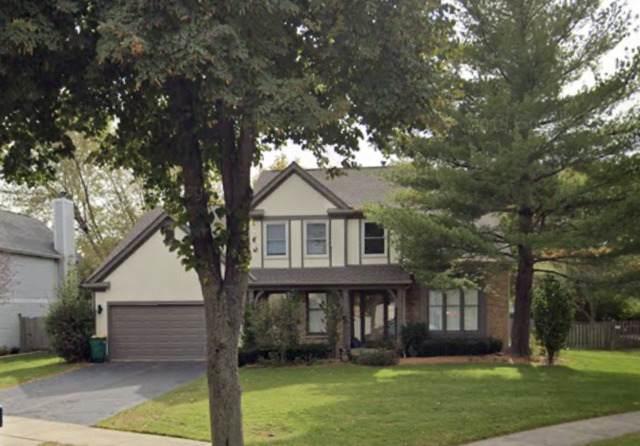 1196 Sandhurst Drive, Buffalo Grove, IL 60089 (MLS #10686382) :: Helen Oliveri Real Estate