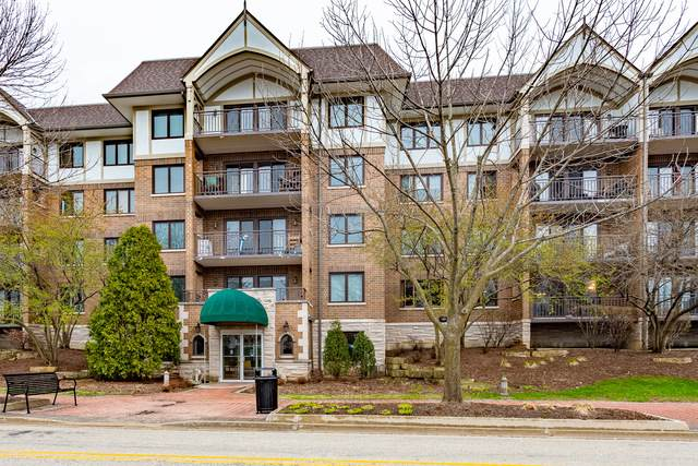 5 S Pine Street #300, Mount Prospect, IL 60056 (MLS #10686396) :: BN Homes Group