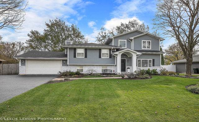 29W317 Hartman Drive, Naperville, IL 60564 (MLS #10686669) :: Angela Walker Homes Real Estate Group