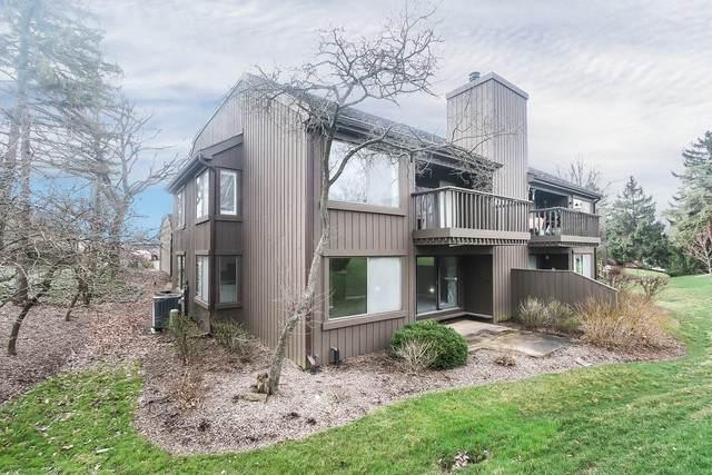 256 N Thornhill Lane D, Lake Barrington, IL 60010 (MLS #10686811) :: Angela Walker Homes Real Estate Group