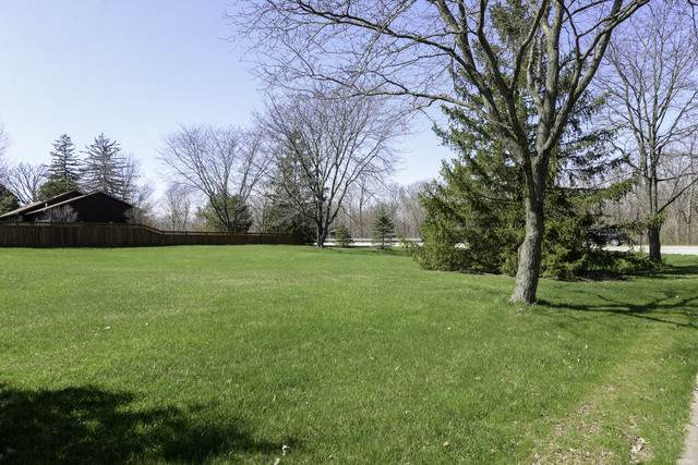 19759 W Manhattan Road, Elwood, IL 60421 (MLS #10687429) :: Helen Oliveri Real Estate