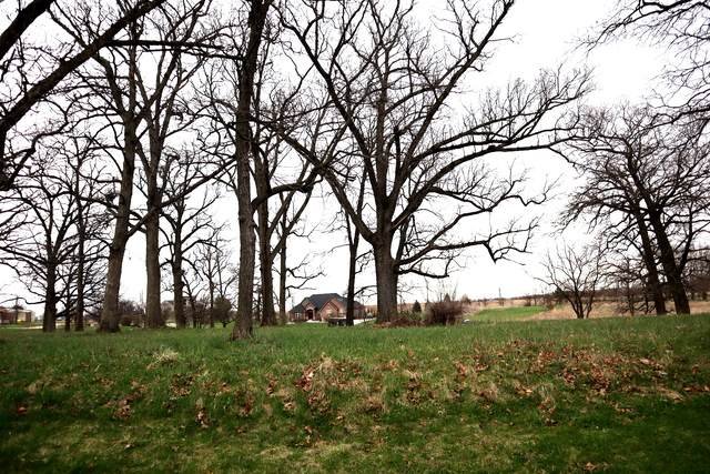 LOTS 3 & 4 Brighton Oaks Drive, Yorkville, IL 60560 (MLS #10688593) :: Property Consultants Realty