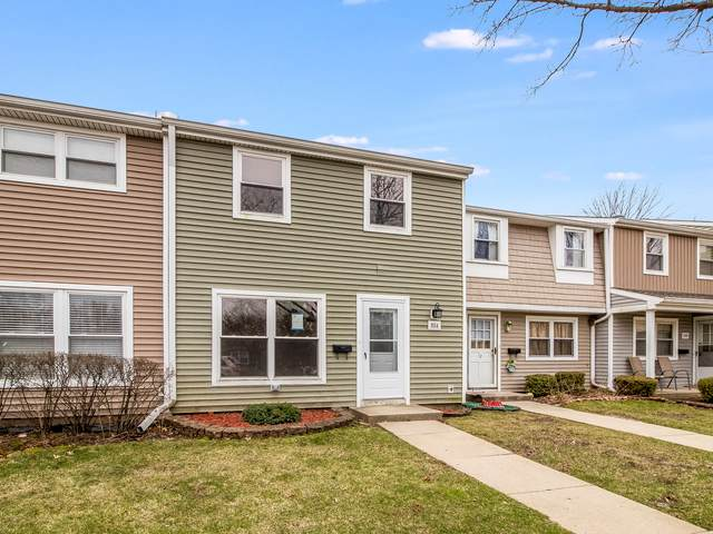804 Mansfield Court, Schaumburg, IL 60194 (MLS #10689518) :: Property Consultants Realty