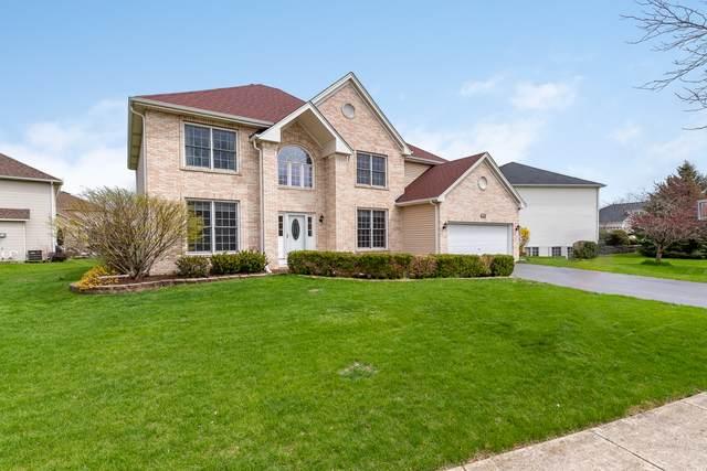 1929 Danube Way, Bolingbrook, IL 60490 (MLS #10689560) :: Ryan Dallas Real Estate