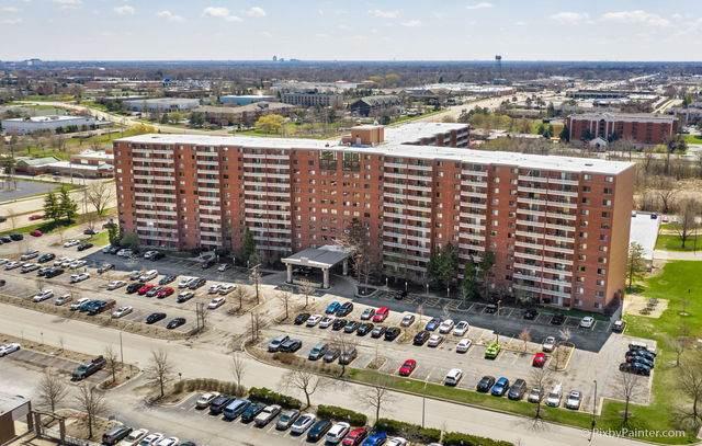 21 Kristin Drive #730, Schaumburg, IL 60195 (MLS #10694277) :: Angela Walker Homes Real Estate Group