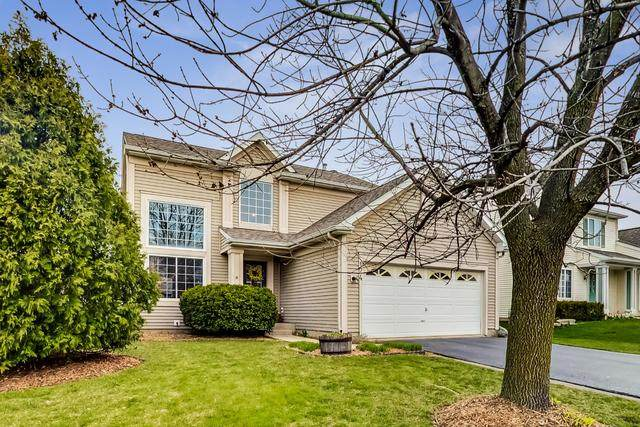 124 Suffolk Lane, Grayslake, IL 60030 (MLS #10697662) :: Property Consultants Realty