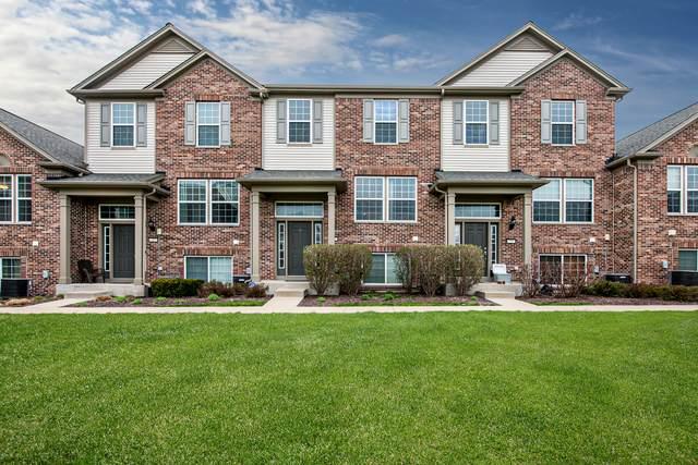 224 Devoe Drive, Oswego, IL 60543 (MLS #10698139) :: O'Neil Property Group