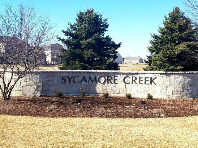 1011 Potomac Avenue, Sycamore, IL 60178 (MLS #10698229) :: Helen Oliveri Real Estate