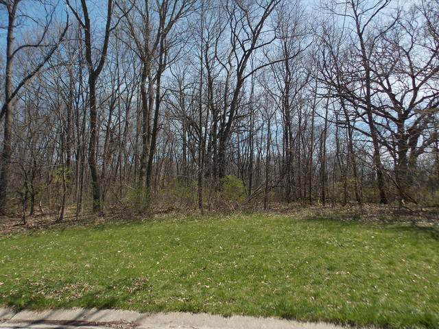 11212 E Riviera Drive, Spring Grove, IL 60081 (MLS #10698905) :: John Lyons Real Estate