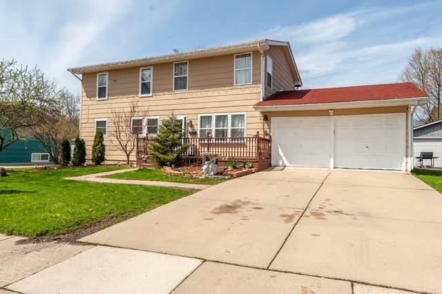 11 Livingston Avenue, Carpentersville, IL 60110 (MLS #10699856) :: Touchstone Group