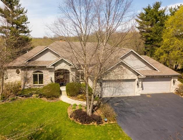 3700 Magnolia Drive, Spring Grove, IL 60081 (MLS #10699962) :: Suburban Life Realty