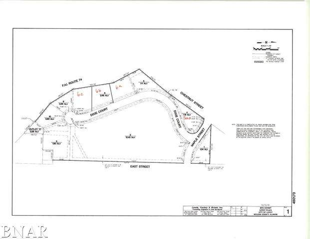 Lot 10 Persimmon Drive, LEROY, IL 61752 (MLS #10700778) :: BN Homes Group