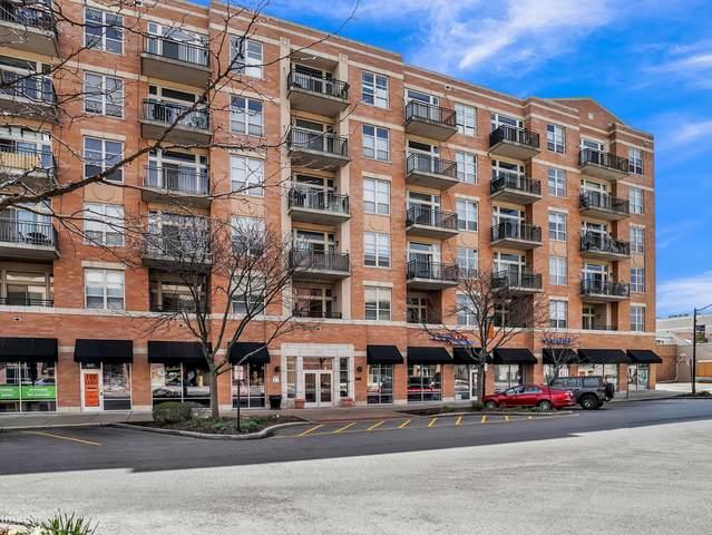 647 Metropolitan Way 303L, Des Plaines, IL 60016 (MLS #10701061) :: Ani Real Estate
