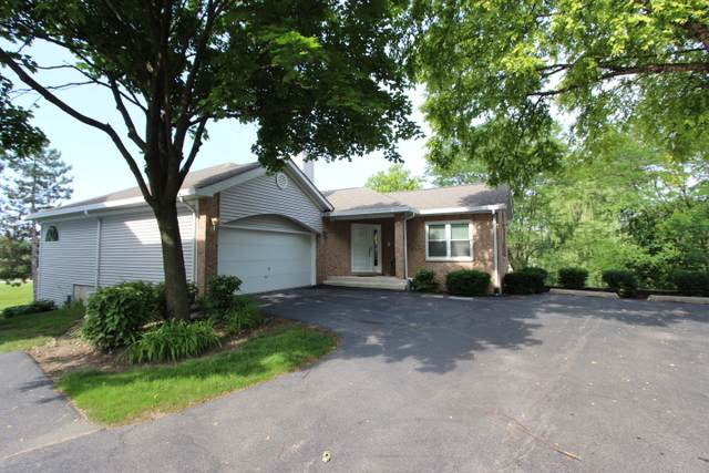 1036 S Parkside Drive, Palatine, IL 60067 (MLS #10701681) :: Property Consultants Realty