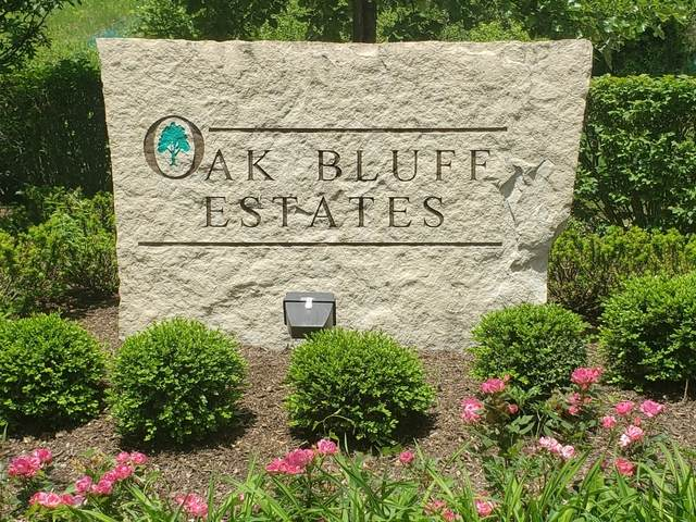 LOT 17 Oak Bluff Lane - Photo 1