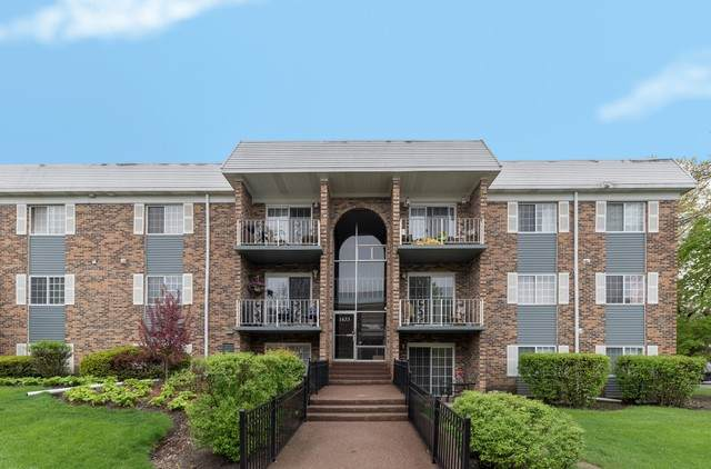 1633 N Windsor Drive #215, Arlington Heights, IL 60004 (MLS #10702727) :: Property Consultants Realty