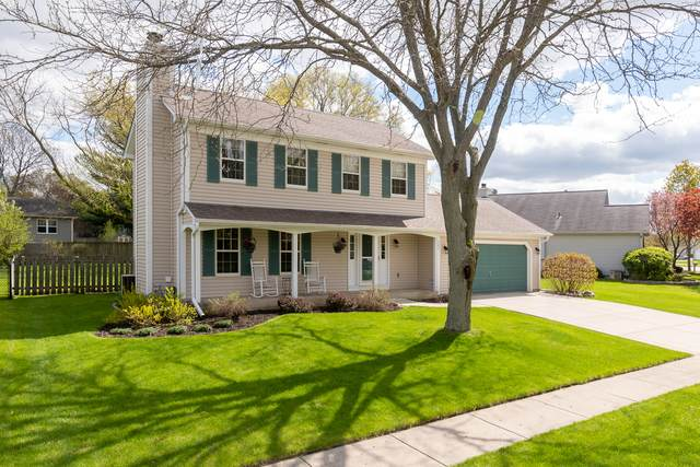 585 Independence Avenue, South Elgin, IL 60177 (MLS #10702771) :: Knott's Real Estate Team
