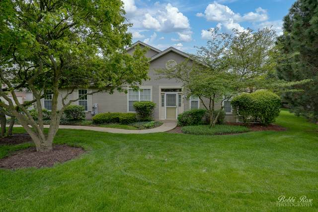617 Littleton Trail 4-11, Elgin, IL 60120 (MLS #10706134) :: Property Consultants Realty