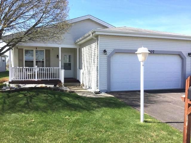 3307 Gallop Court, Grayslake, IL 60030 (MLS #10706699) :: Helen Oliveri Real Estate