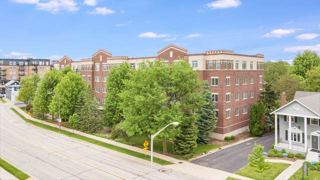 5329 Main Street #204, Downers Grove, IL 60515 (MLS #10706943) :: Property Consultants Realty