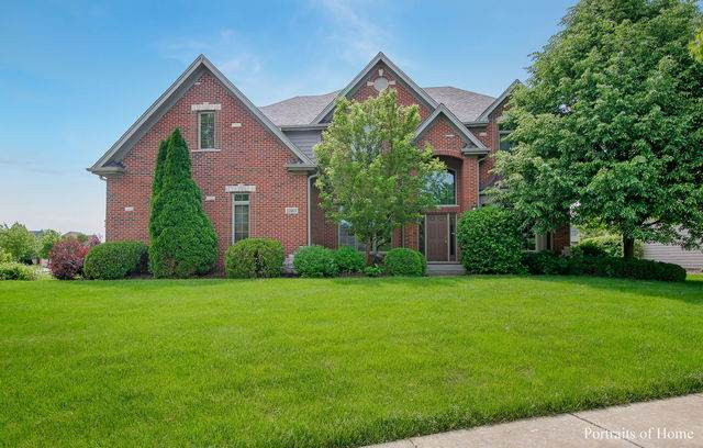 11668 Cinema Drive, Plainfield, IL 60585 (MLS #10707095) :: Property Consultants Realty