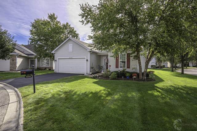 1550 Benzie Court, Romeoville, IL 60446 (MLS #10707297) :: Property Consultants Realty