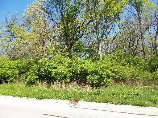 LOT#22 Thomas Drive, Morris, IL 60450 (MLS #10707501) :: Schoon Family Group