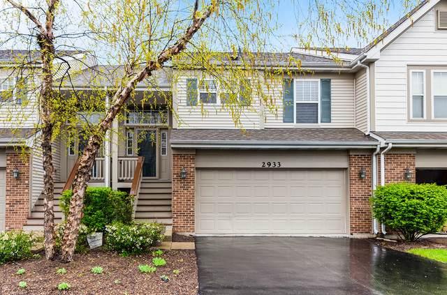 2933 Saganashkee Lane, Naperville, IL 60564 (MLS #10708650) :: Ani Real Estate