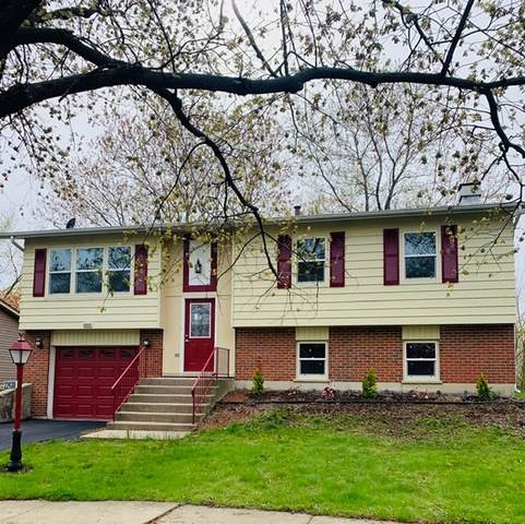 22430 Imperial Drive, Richton Park, IL 60471 (MLS #10708660) :: Littlefield Group