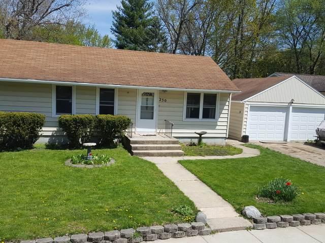 230 W Cleveland Street, Waterman, IL 60556 (MLS #10711112) :: Littlefield Group