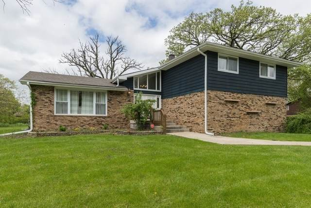 24736 S Oak Lane, Crete, IL 60417 (MLS #10713373) :: Property Consultants Realty